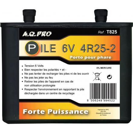 Pile porto R825 - Saline 6V AQPRO