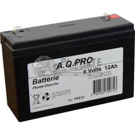 Batterie Plomb étanche 6V 13.3Ah VRLA AGM