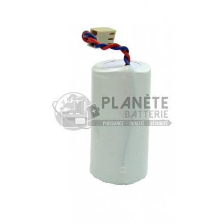 Pile lithium compatible Daitem BATLI01 3.6V 5Ah BATSECUR