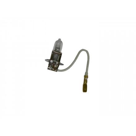 Ampoule Halogène H3 - Culot PK22S - 24V - 70W