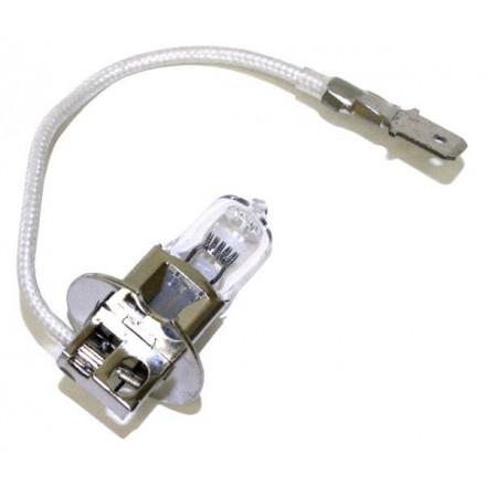 Ampoule Halogène H3 - Culot PK22S - 6V - 75W